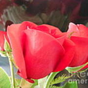 Anniversary Roses With Love 2 Art Print