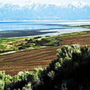 Antelope Island Wasatch Mountains Utah Art Print