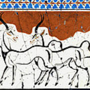 Antelope Of Akrotiri - Study No. 2 Art Print