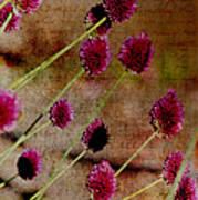 Antique Style Pink Floral Art Print