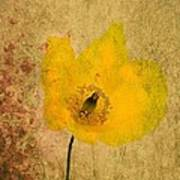Antique Yellow Flower Art Print