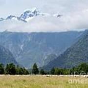Aoraki Mt Cook Highest Peak Of Southern Alps Nz Art Print