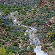Apache Trail River View Art Print