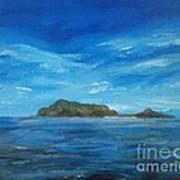 Apo Island Art Print