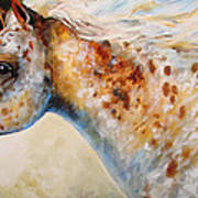 Appaloosa Spirit 3618 Art Print