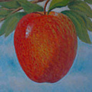 Apple 1 In A Series Of 3 Art Print by Don Young