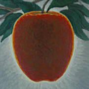 Apple 2 In A Series Of 3 Art Print