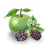 Apple And Blackberries Art Print