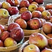 Apple Baskets Art Print