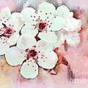 Apple Blossoms Pink - Digital Paint Art Print