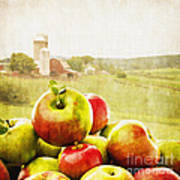 Apple Picking Time Art Print by Edward Fielding