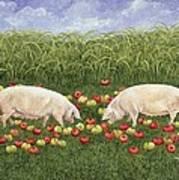 Apple Sows Art Print
