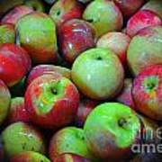 Apples Apples And More Apples Art Print