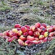#apples Art Print