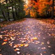 Approaching Autumn Art Print
