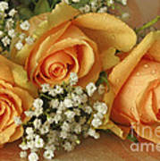 Apricot Rose Bouquet Photograph By Inspired Nature Photography Fine