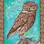 Aqua Barn Owl Art Print
