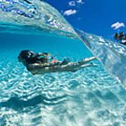 Aqua Dive Art Print