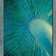 Aqua Gills Art Print