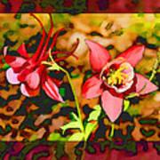 Aqualigia Floral 11x14 Art Print