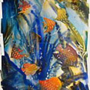 Aquarium 2 Archived Work Art Print by Charlie Spear