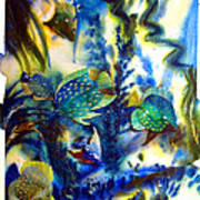 Aquarium Archived Work  Art Print by Charlie Spear