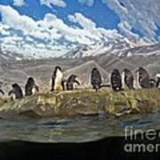 Aquarium Penguins Line Dance Art Print