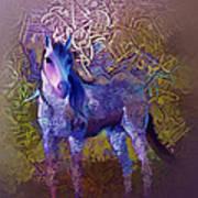 Arabian Horse 2  Art Print