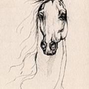 Arabian Horse Drawing 25 Art Print