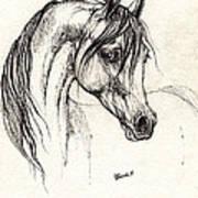 Arabian Horse Drawing 28 08 2013 Art Print