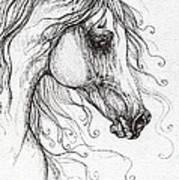 Arabian Horse Drawing 48 Art Print