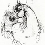 Arabian Horse Drawing 8 Print by Angel  Tarantella