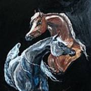 Arabians Art Print