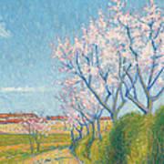 Arbes En Fleurs A L'entree De Cailhavel Art Print