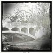 Arboretum Bridge Art Print by Justine Connolly