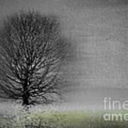 Arbrensens - V06gr Art Print