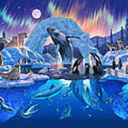 Arctic Harmony Art Print