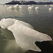 Arctic Ice Floe Art Print