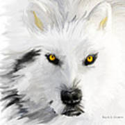 Arctic Wolf With Yellow Eyes Art Print