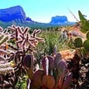Arizona Bell Rock Valley N4 Art Print