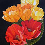 Arizona Blossoms - Prickly Pear Art Print
