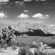 Arizona Desert #1 Art Print