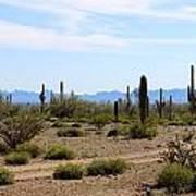 Arizona Desert Ride Art Print