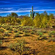 Arizona Landscape Iv Art Print