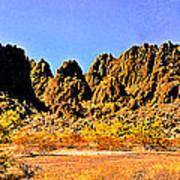 Arizona Panorama Organ Pipe Art Print