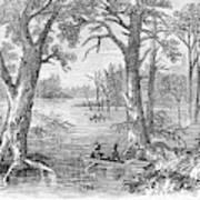 Arkansas Sunken Lands Art Print