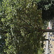 Arlington National Cemetery - 121228 Art Print