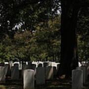 Arlington National Cemetery - 121243 Print by DC Photographer