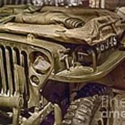 Army Mule  Art Print
