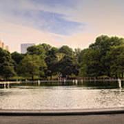 Around The Central Park Pond Art Print